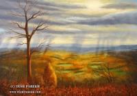 Blue Ridge Landscape. 16x20. oil on linen.